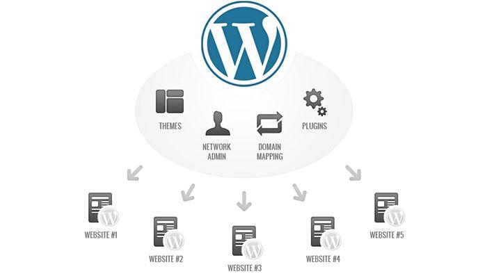 WordPress Multisite Demo